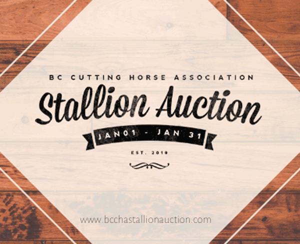 BCCHA Stallion Auction