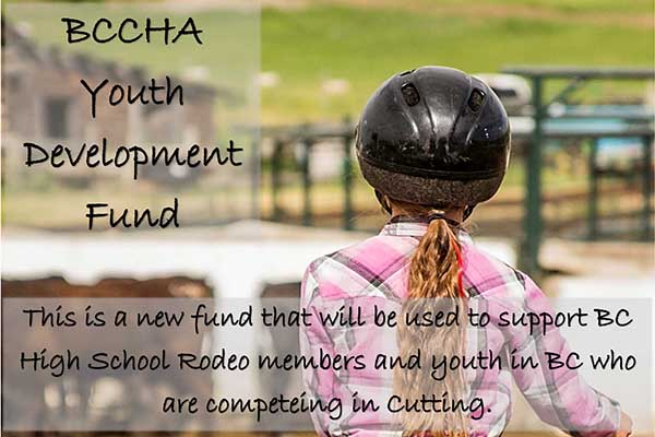 BCCHA Youth Development
